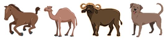 Separation - art varieras medan storlek och färg hålls konstant.